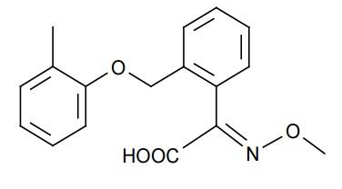 BF 490-M1 - Paramètre chimique