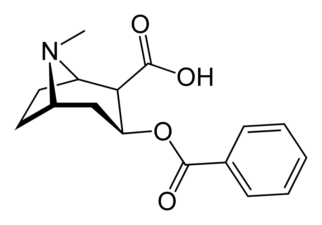 Benzoylecgonine - Paramètre chimique